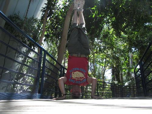 19. botanical gardens headstand