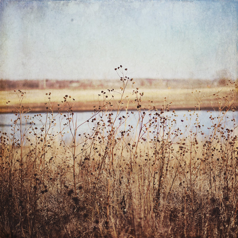 Textured Landscape Photography gallery32 etsy