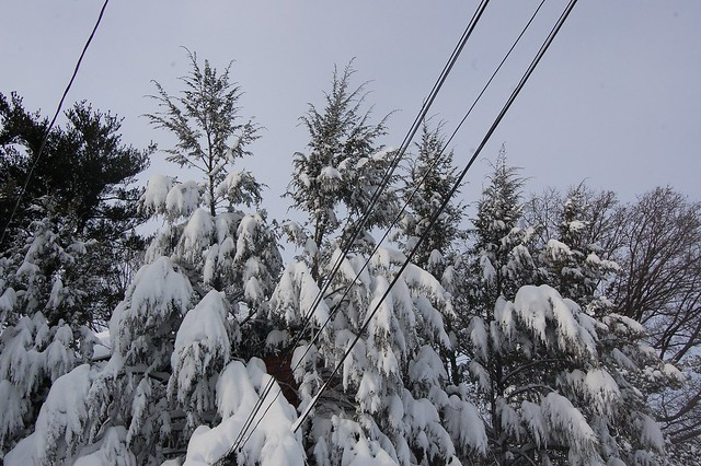 Snow and lines