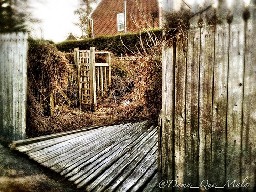 Neglected Garden by damn_que_mala