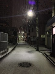 真夜中の雪景色