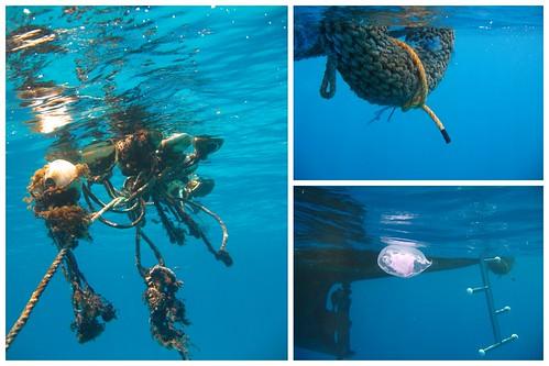 Ägypten unter Wasser 2012 2012-04-151