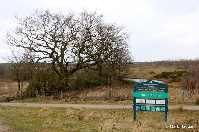 The Entrance to Hicks Lodge