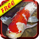 Koi Fish Live Wallpaper Free for Android