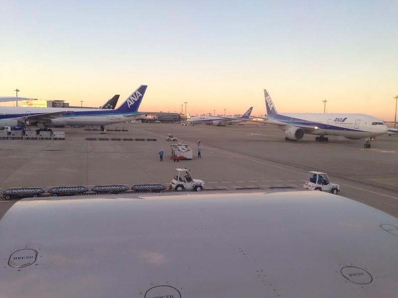 ANA Jets in Haneda