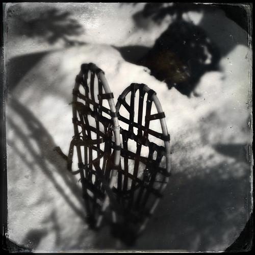 SnowShoes by Davidap2009