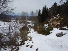 The Snow Path