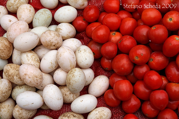 Eggs and tomatoes - Vietnam
