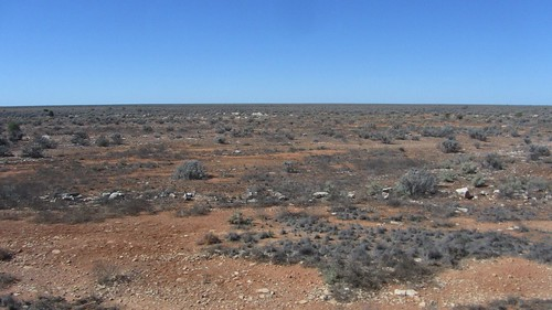 the nullabor plain
