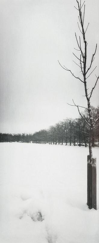 snowfield finland helsinki