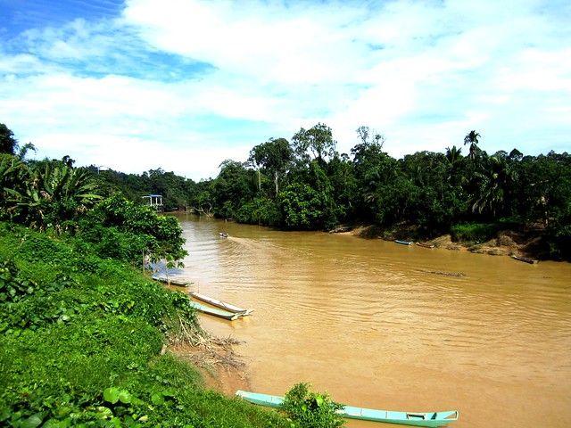 The river 2