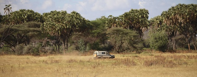 Driving across the Samburu National Park