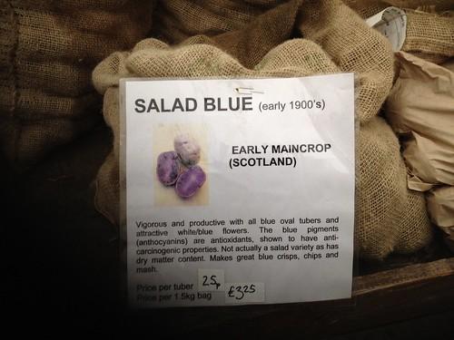 Salad Blue Potato