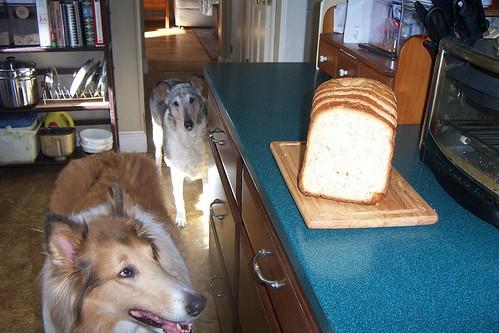 baking0005