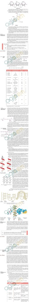DTU Notes - 1 Year APAC - Biomolecules