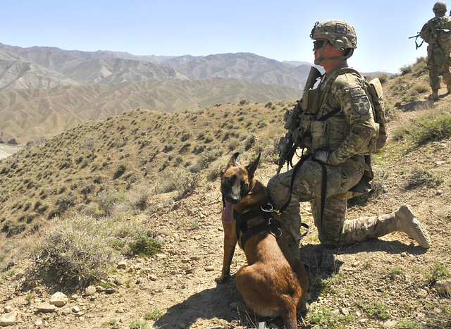 US Army K-9 security