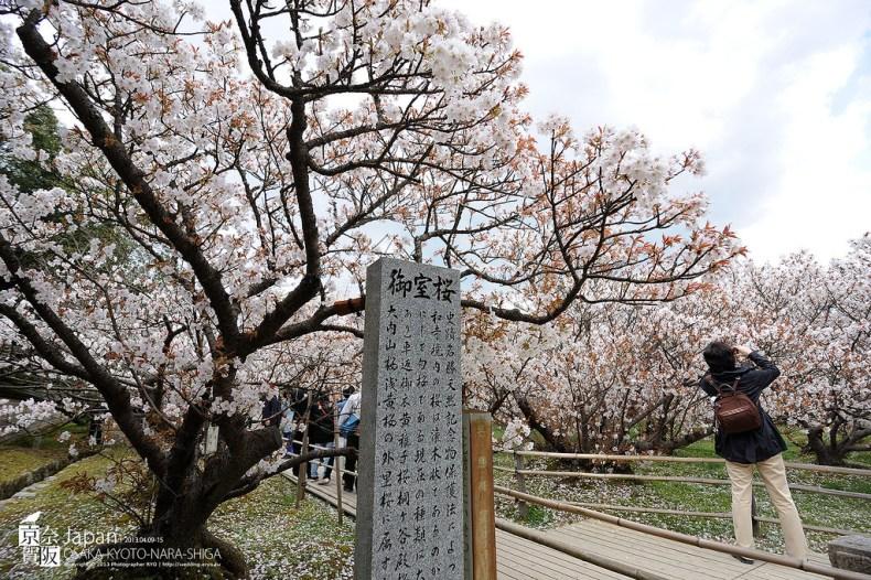 Japan-0731