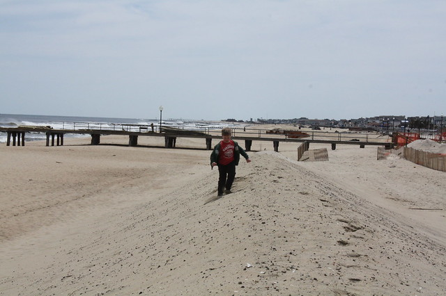 A new dune alters the whole terrain of the beach