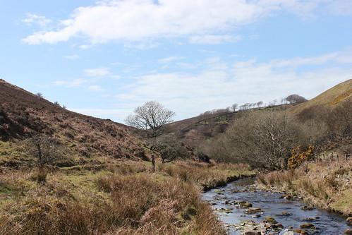 20120415_3921_Weir-water-walk