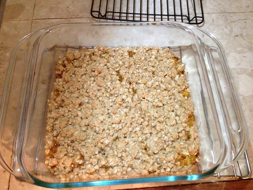Apricot oatmeal bars fresh out of the oven in an 8