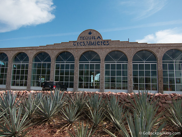 Tres Mujeres organic tequila distillery