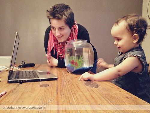 Fish on Skype