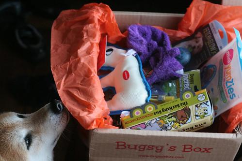 22 April 2013 BugsysBox3
