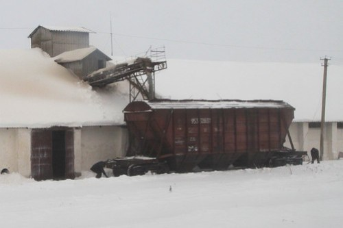 Loading grain wagons at a Ukrainian silo