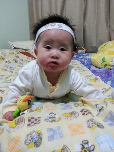 Wenda 25 weeks by effendy_pin