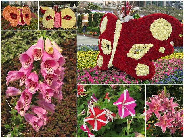 HK-Flower-Show-20132