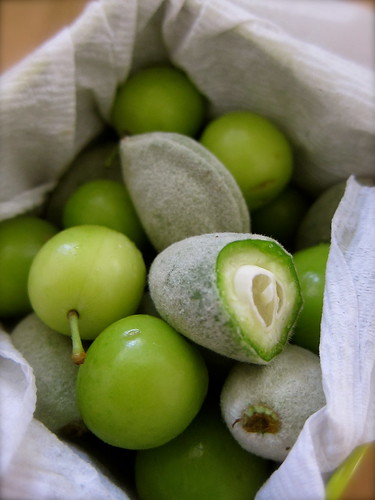 Green Almonds + Sour Plums