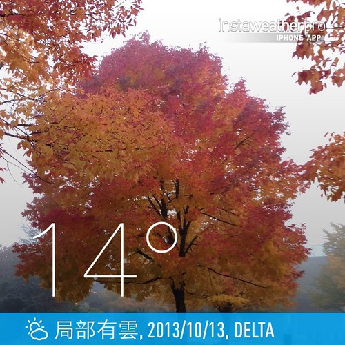 #weather #instaweather #instaweatherpro  #sky #outdoors #nature #world #love #followme #follow #beautiful #instagood #fun #cool #like #life #nice #happy #colorful #photooftheday #amazing #delta #加拿大 #day #autumn #ca ⛅️下午好☕️