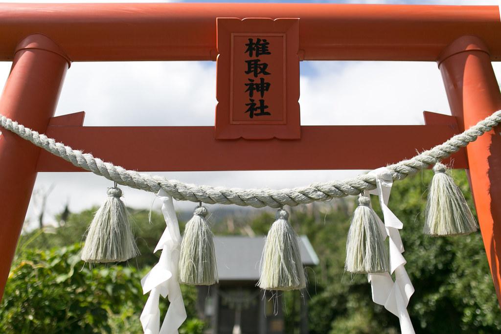 椎取神社 三宅島 取材 #tamashima #miyakejima #tokyo #tokyoreporter