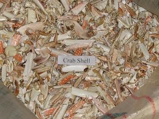Vỏ cua (Crab shell)
