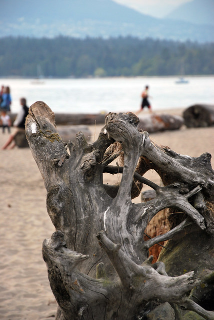 st kitts beach vancouver