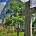 Graveyard in Pirita Convent - Tallinn, Estonia