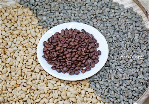 台東太麻里+咖啡豐盛咖啡003