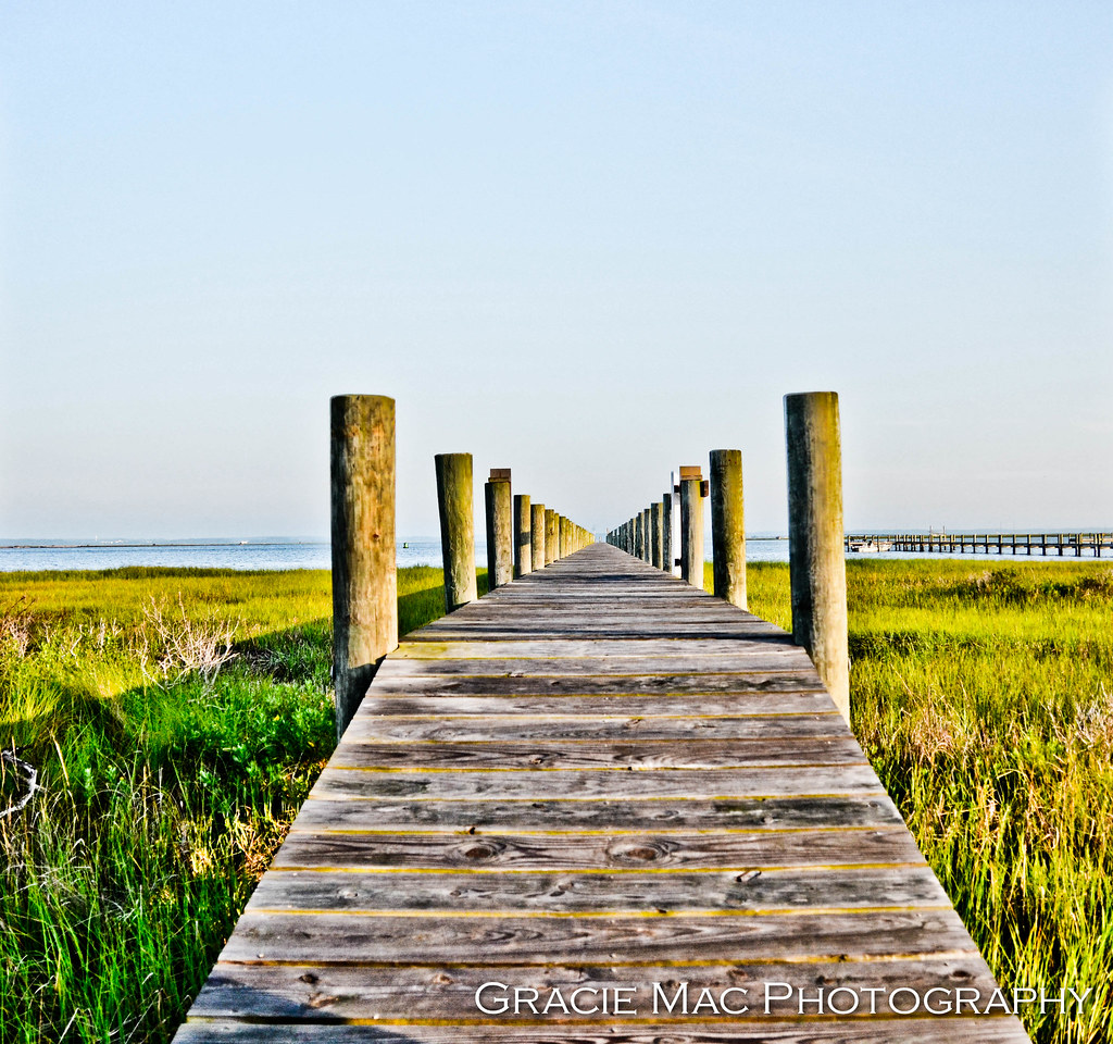 1206_chincoteague_853