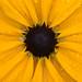 20120805-_DSC0044.jpg