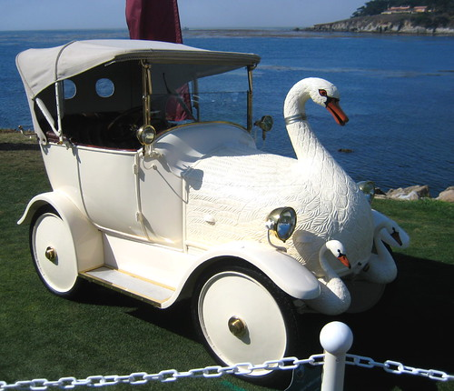 Swan Song - or maybe Cygnet Song