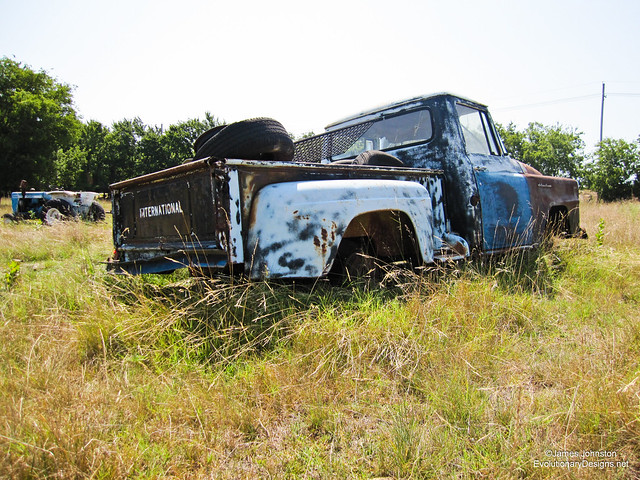Abandoned 1955 International Harvester S-Series light duty truck