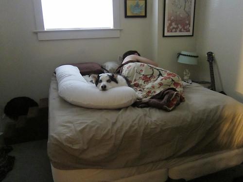 Lazy Dougal