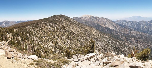Panorama shot from the summit of East San Bernardino Peak