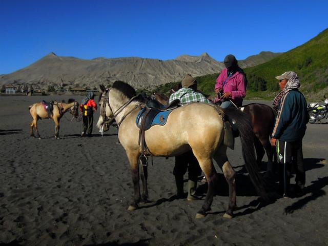 Local horsemen