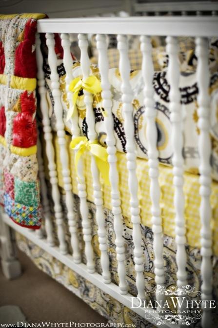 Paisley's Nursery 17