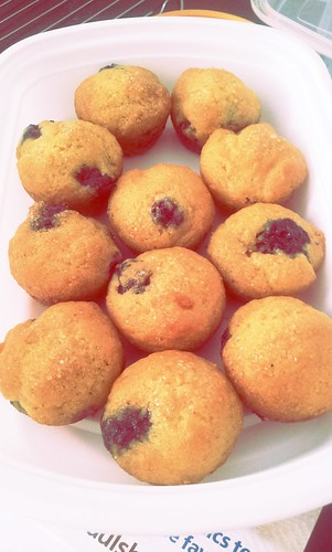 Gluten-Free Blueberry Muffins