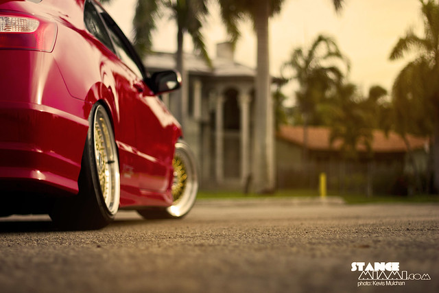 Red gbbs_8