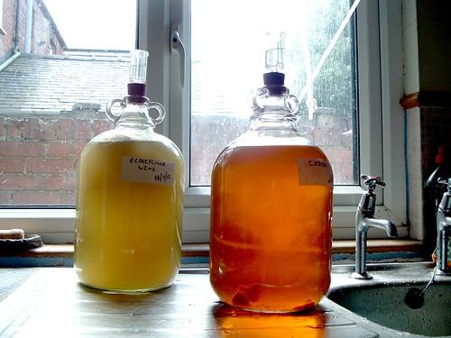 Elderflower wine and cider