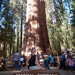 Jenn at the General Sherman Tree
