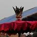 Vodon celebration impressions, Grand Popo, Benin - IMG_1955_CR2_v1